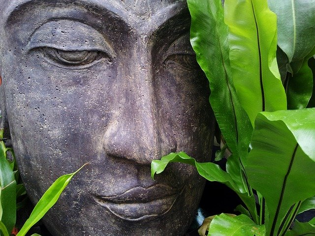 Online: Mindfulness Based Stress Reduction | MBSR Otoño 21